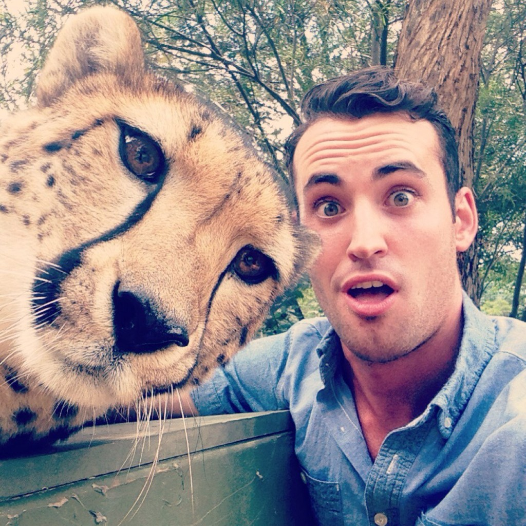 Cheetah-Selfie