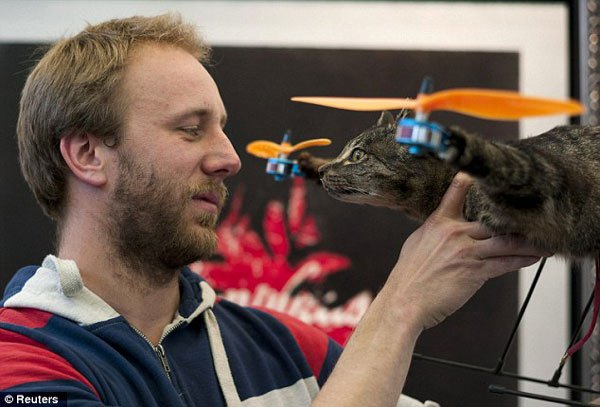 cat-copter-2