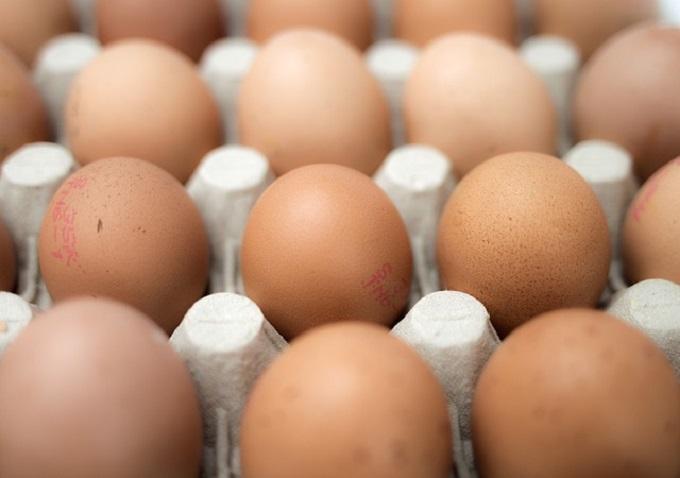 eggs-551292_640