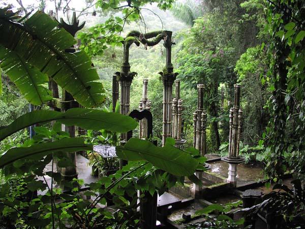No Podrás Creer Estas Maravillosas e Increíbles Cosas Con Las Que Te Puedes Encontrar En Este Bosque Lluvioso de México